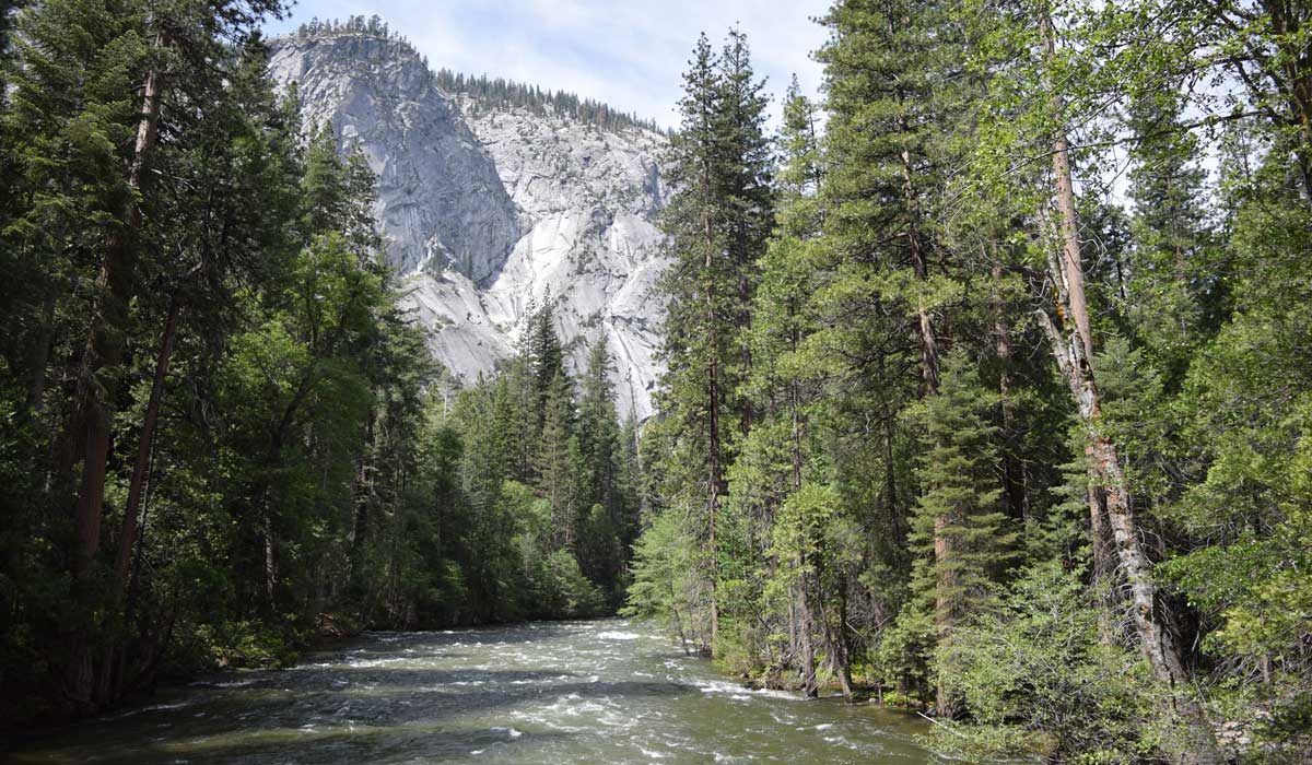 South Fork Kings River