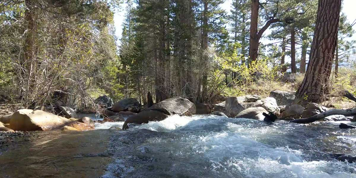 Most sites are next to the Middle Fork of Bishop Creek