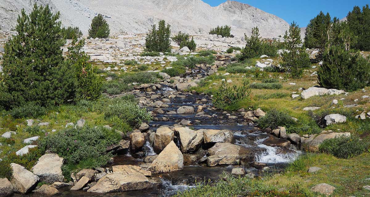 Creek on the way to Mather Pass