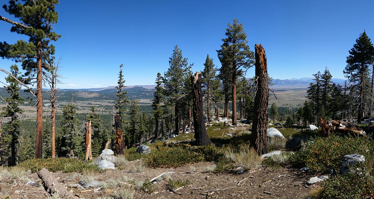 View towards Mammoth Lakes and Highway 395